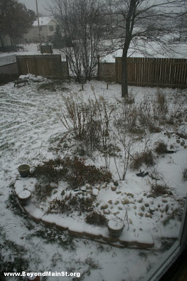 snow on garden 12:14 PM
