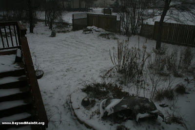 snow in garden at 1:37 PM