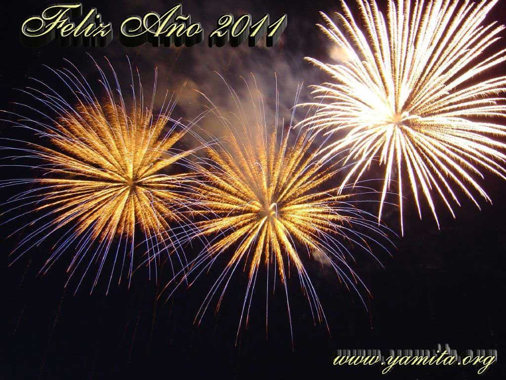 TECNOFULL les desea un feliz año 2011 nuevo lleno de prosperidad