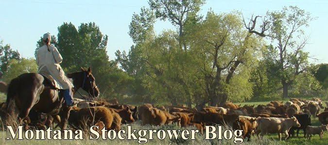 Montana Stockgrower Blog
