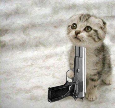 suicide kitteh