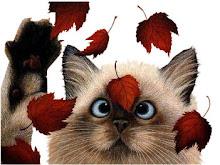 Als bladeren in de wind