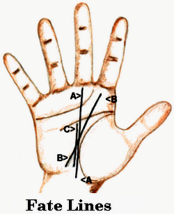 Fate Line on Hand - Palmistry Hand Reading