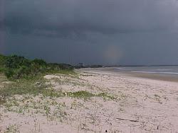 Sand, Savannah, Sea and Sky