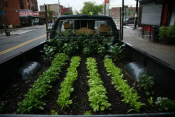 [truck+garden+planted+small+from+wicked+delicate]