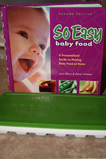 So Easy Baby Food Kit by Fresh Baby