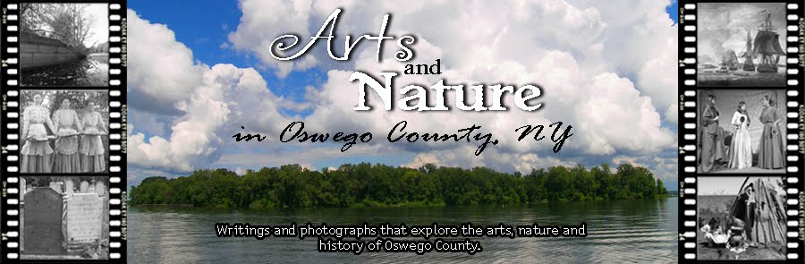 Arts and Nature in Oswego County, New York