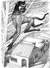 El Hombre Gato
