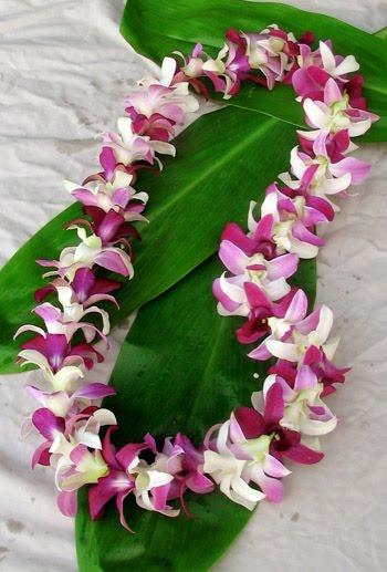 [hawaiin+lei]