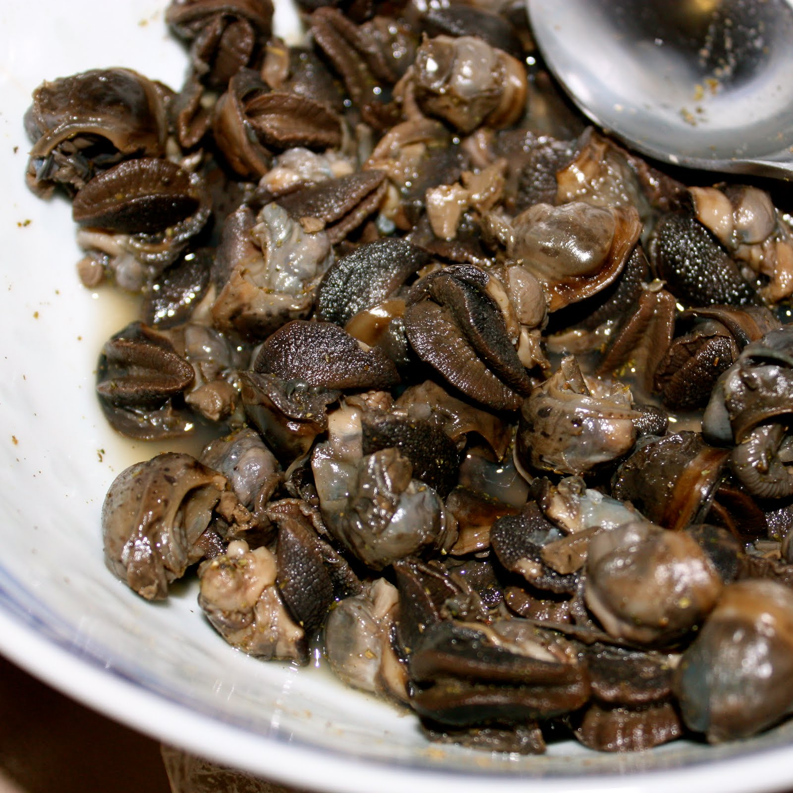 Escargot Recipes Without Shell
