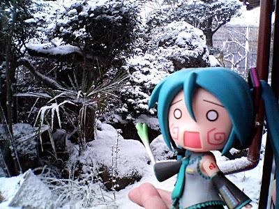3月なのに雪…(ヽ´ω`)