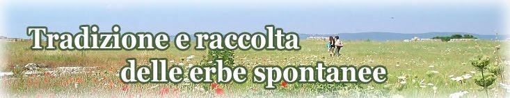 Passeggiata Erboristica / Tradizione e raccolta delle erbe spontanee