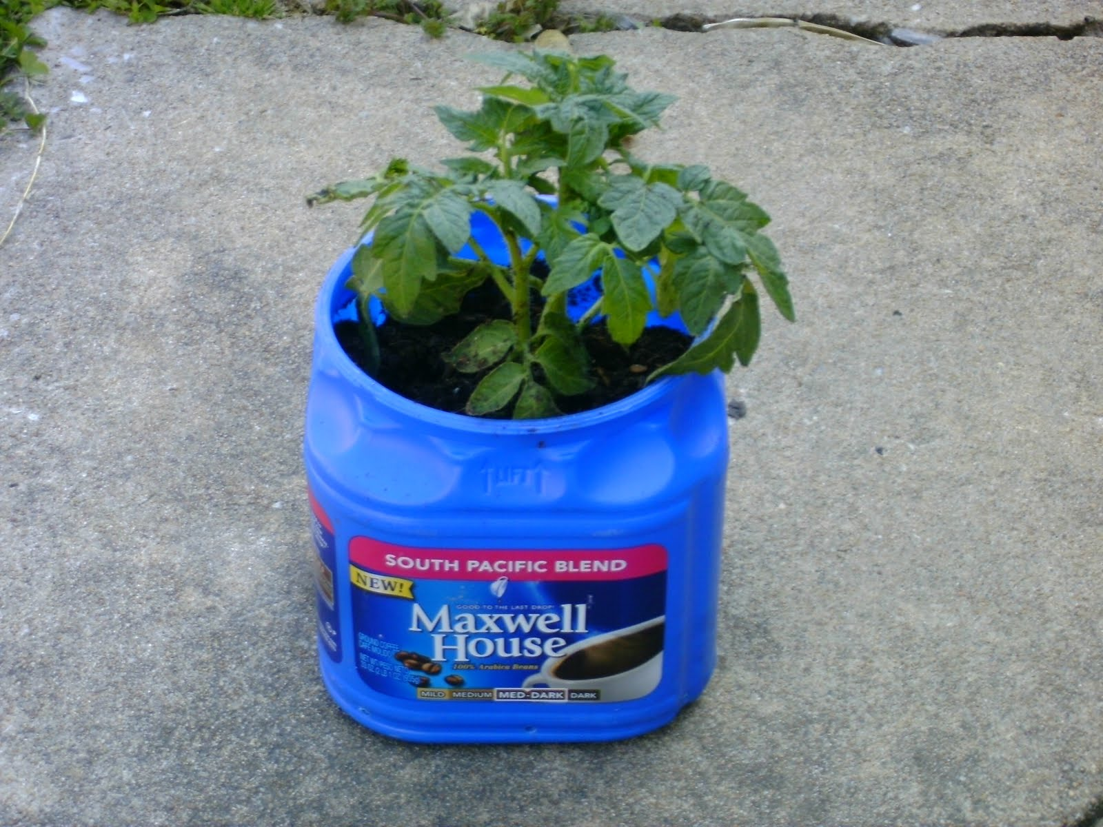 This great life recycled coffee can planter for Recycled plastic containers