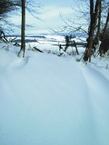 Drifts on Bury Ditches