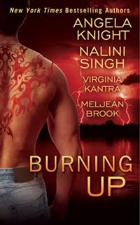 Burning Up Anthology