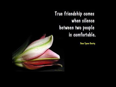 funny quotes about friendship and life. funny quotes about friendship