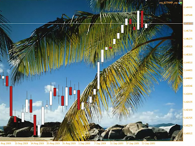 Slideshow indicator for Metatrader 5