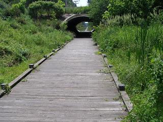 Boardwalk on WB&A Trail