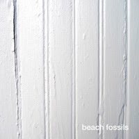 Beach Fossils (S/T)