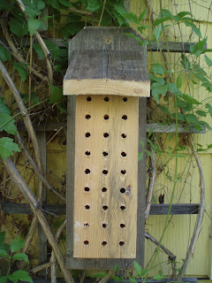 Build A Mason Bee House In 5 Minutes