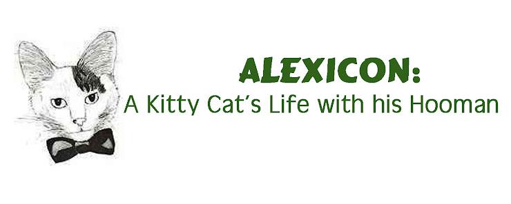 Alexicon: A Kitty Kat's Life wiff hiz Hoomin