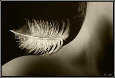 Toco-te suavemente...Neste querer de palavras insubmissas...