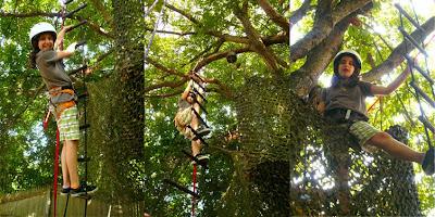 Rope Ladder  - Sheva Apelbaum