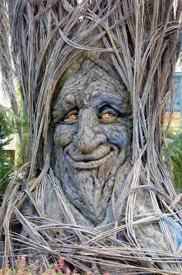strange and funny trees 35 Pohon Aneh Yang Tumbuh Di Tempat Aneh