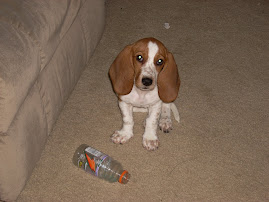 Bella was a baby once too...