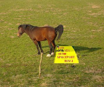spaceport horse