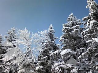 スキー行ってきました!!part2