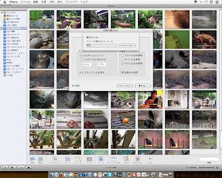 Mac→Vistaお引越し第三弾:iPhotoをWindowsへお引越し