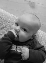 Seth 3½ månad gammal