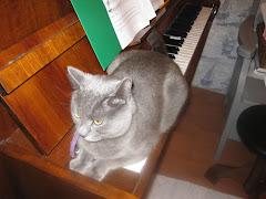 Pianonsoitosta...