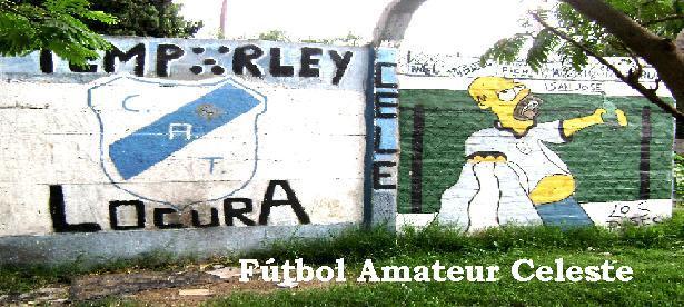 Fútbol Amateur Celeste