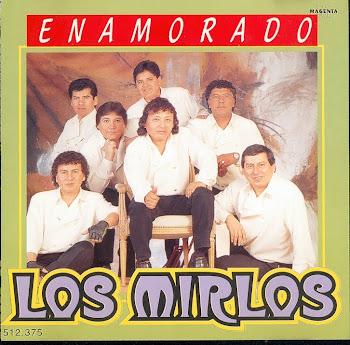 los mirlos 1996