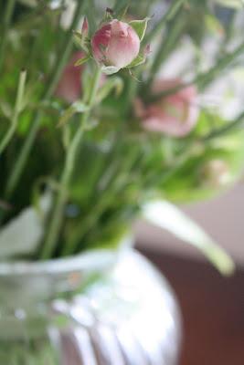 dandere roser i vase