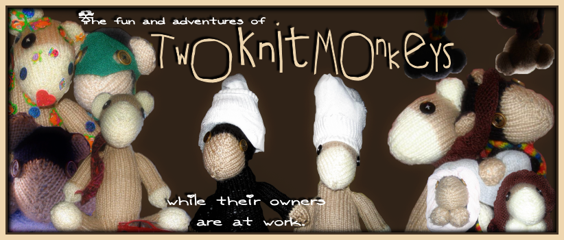 Two Knit Monkeys