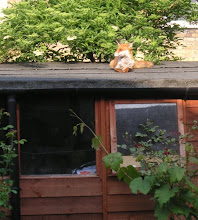 if you look very carefully on the shed roof....