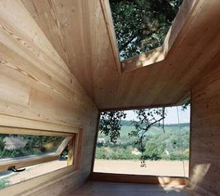 Interior casa del árbol