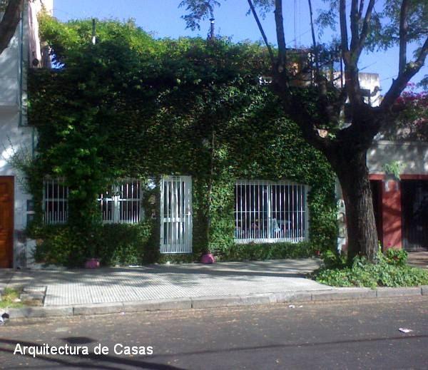 Arquitectura de casas fachada con plantas de hiedra for Fachadas con plantas trepadoras