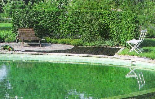 Parquización y piscina