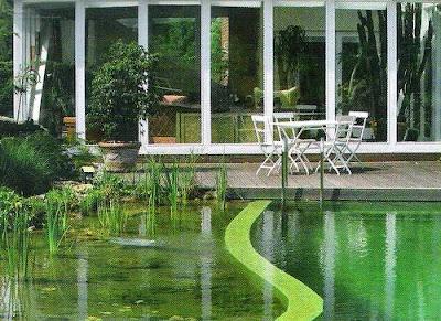 Plantas y grava para piscina