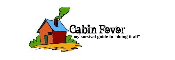 """Cabin Fever - my survival guide to """"doing it all"""""""