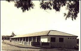 INAUGURACIÓN de la nueva sede del colegio en 1971