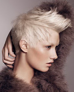 Short Female Hair Models Will Be Trend 2010