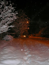 Alaska '07