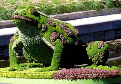 Garden Designing Art