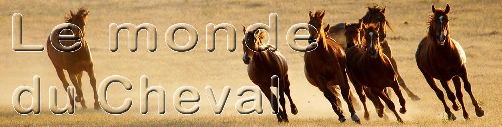 Le monde du Cheval