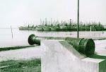 la flota camaronera de carmen